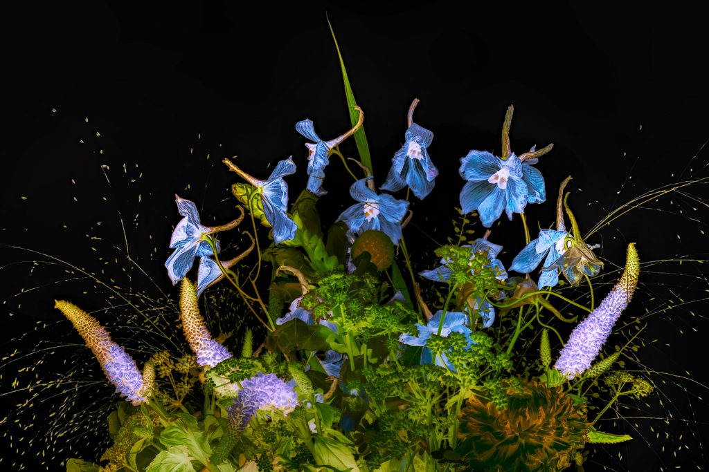 Bouquet with larkspur  © Julian Köpke